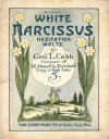 White Narcissus: Hesitation Waltz